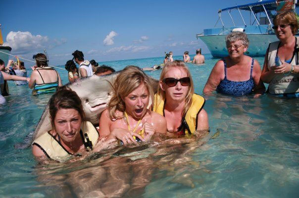 Cuidado con el Tiburón